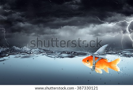 Small Fish With Ambitions Of A Big Shark Swimming In Tempest - Business Concept  - stock photo
