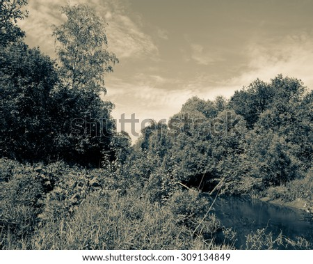 small forest river in dense thickets under blue skies. tinted - stock photo
