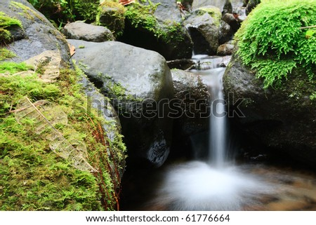 small fresh water river and rocks covered with specific vegetation - stock photo