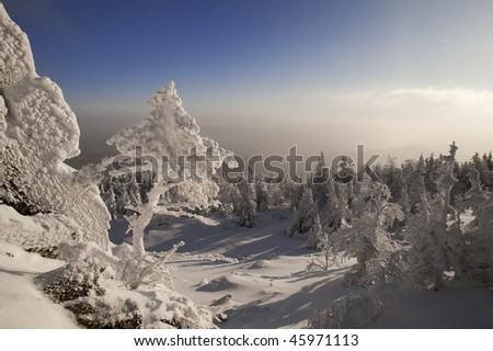Small frozen fir tree growing in rocks at Urals, Russia - stock photo