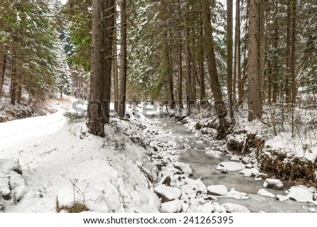 Small frozen river in the forest. Frozen runlet in the middle of the forest with fir trees covered with snow - stock photo