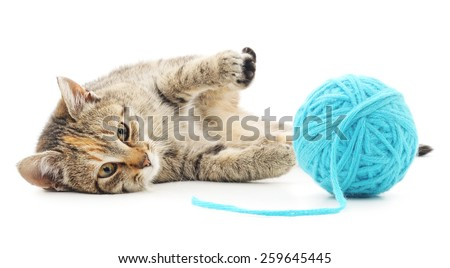 Small funny kitten and clew of thread . Isolated on white background - stock photo