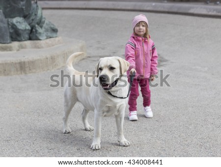 small girl in pink clothing holding for leash adult yellow labrador retriever outdoors in town  - stock photo