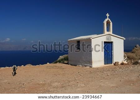 Small goat near traditional greek chapel - stock photo