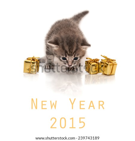 Small gray kitten isolated on white background, New Year, 2015 - stock photo