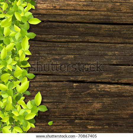 Small green plants depend on old wood - stock photo