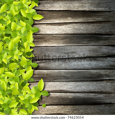 Small green plants depend on old wood background - stock photo