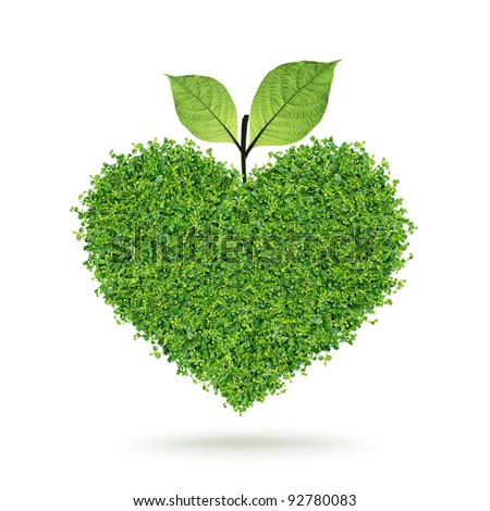 Small green plants heart and leaf in the happy Valentine's day - stock photo