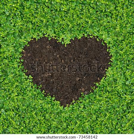 Small green plants, soil, fertilizer is a heart shape. - stock photo
