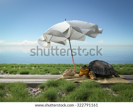Small green turtle on the beach. Tourism concept vacation background - stock photo