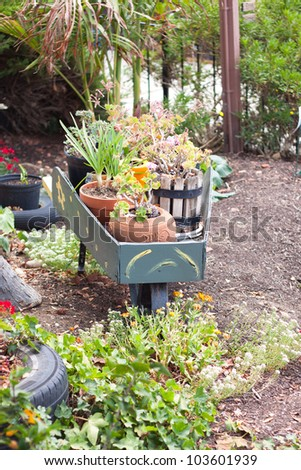 small herb and flower garden with wooden wheelbarrow - stock photo