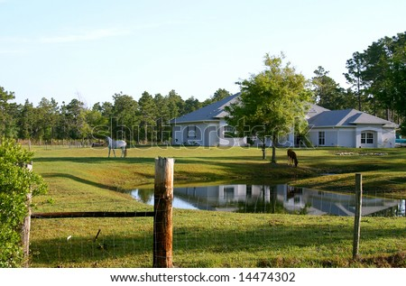 Small horse farm in Central Florida showing pond, house and two horses grazing in the front pasture. - stock photo