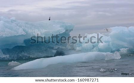 Small icebergs, Alaska - stock photo