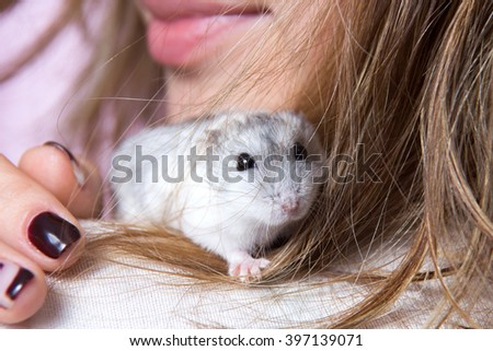 small Jungar hamster on the shoulder of a woman