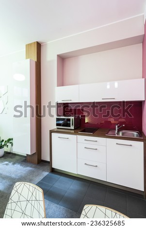 Small kitchen area in the apartment in city centre