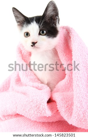 Small kitten in pink towel isolated on white - stock photo
