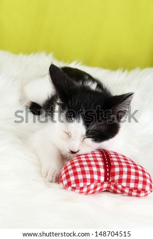 Small kitten on white carpet on fabric background - stock photo
