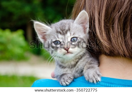 small kitten sits on the shoulder of the girls - stock photo