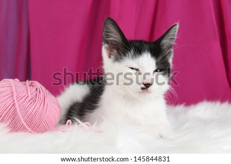Small kitten with ball of yarn on white carpet on fabric background - stock photo