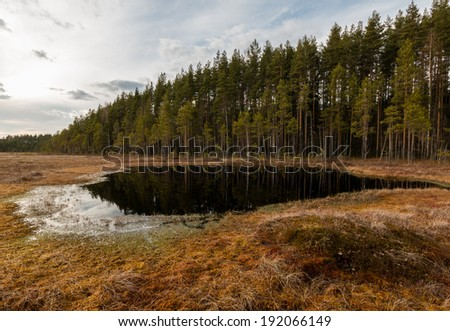 Small lake at a bog near a ridge forest in Finland - stock photo