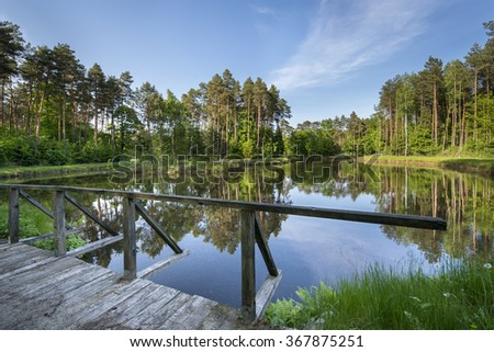 Small lake in the Polish forest during sunny day - stock photo