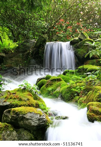 Small natural spring waterfall surrounded by moss and lush foliage. - stock photo