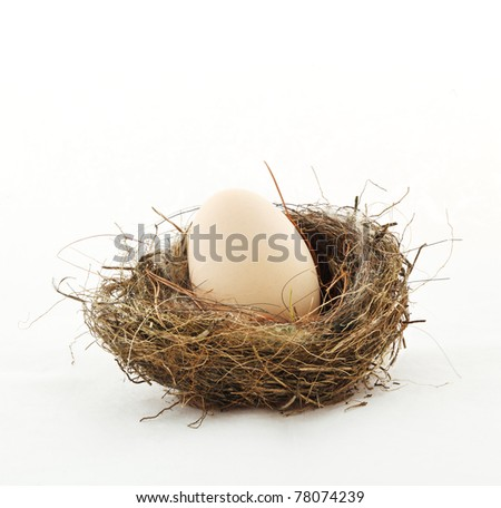 Small nest with big egg, isolated on white