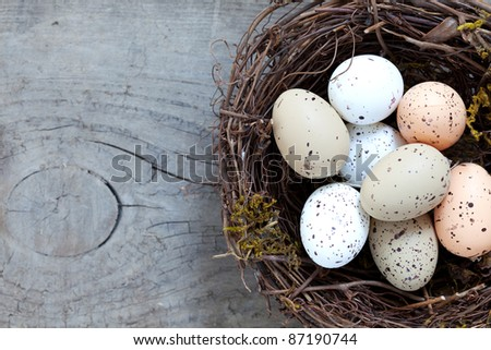 small nest with eggs on wood - stock photo
