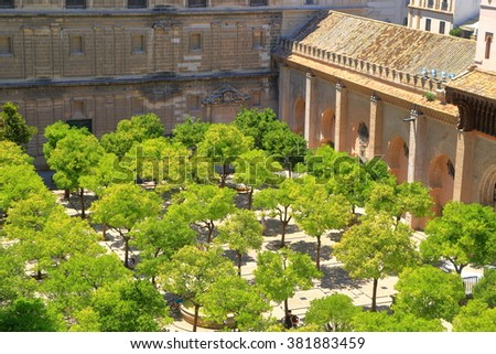 Small orange trees surrounded by the cloister of the Cathedral of Saint Mary of the See (Seville Cathedral) in Seville, Andalusia, Spain - stock photo