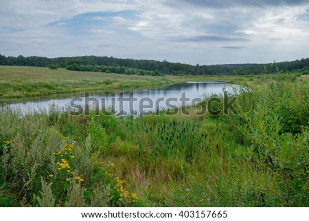 small overgrown pond lost in the fields of central Russia