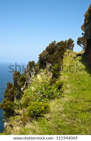 small path beside he steep west coast of fllores near Ponta da Faja - stock photo