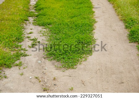 Small path going between green grass and weed - stock photo