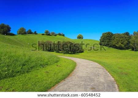 Small path in the green forest with blue background - stock photo