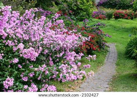 Small path of stone in a colorful garden with many flowers.