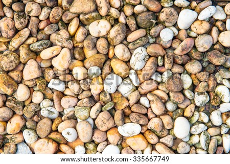 Small pebbles or stone or rock in garden. - stock photo