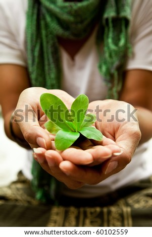 Small plant on a women's hand. Save the planet. - stock photo