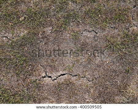 Small plants in a dehydrated soil.(crack soil - water crisis)  - stock photo
