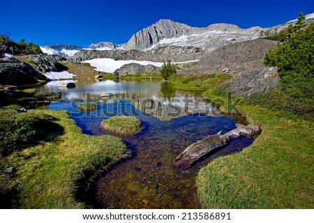 Small pond in meadow at 10,000' elevation, Eastern Sierra, California. In the background is 12,247' North Peak. - stock photo