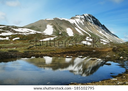 Small pond with mountain reflected in Wilcox Pass trail, Canada - stock photo