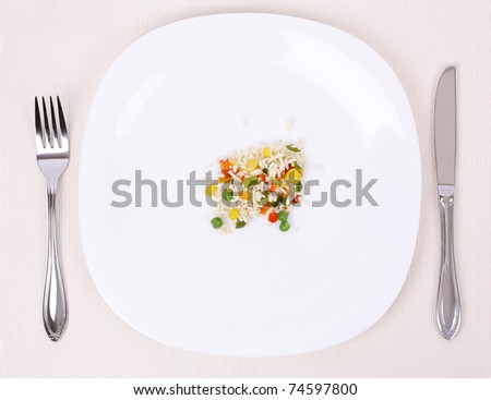 Small portion of food on a big plate - stock photo