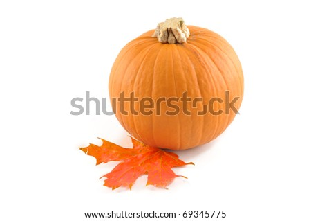 Small pumpkin and red maple leaf on a white background
