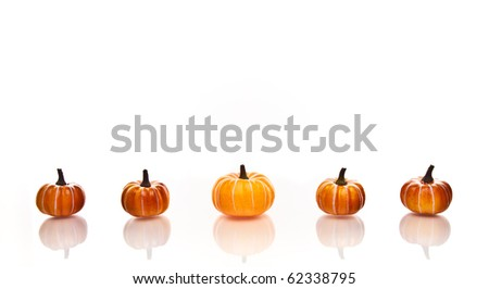 Small pumpkins in a row on a a white background. - stock photo