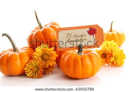 Small pumpkins with chrysanthemums and table card - stock photo