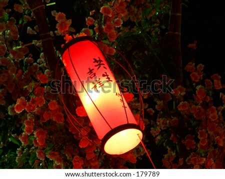Small red lantern hang under a tree at night - stock photo