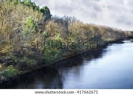 Small river and woods near a beach in Aquitaine, France - stock photo