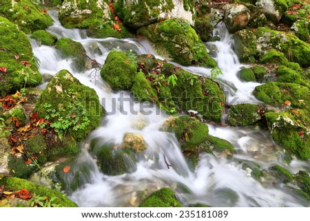 Small river flowing over green leaves and rocks in autumn - stock photo