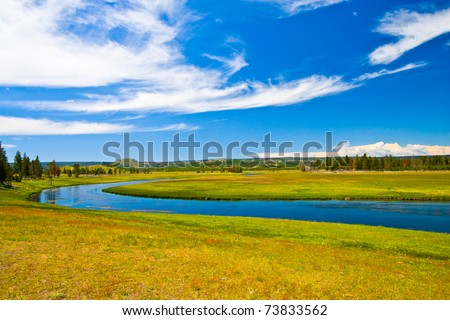 Small river in the forest - stock photo
