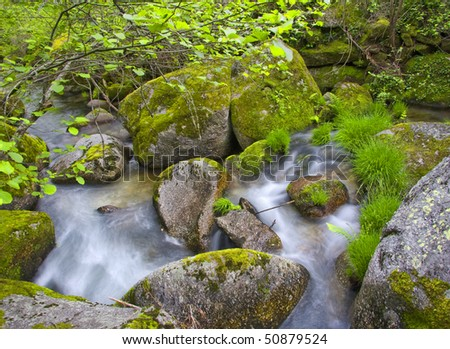 small river on the forest, Portugal - stock photo