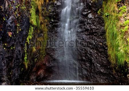 small river waterfall at Madeira Island, Portugal - stock photo