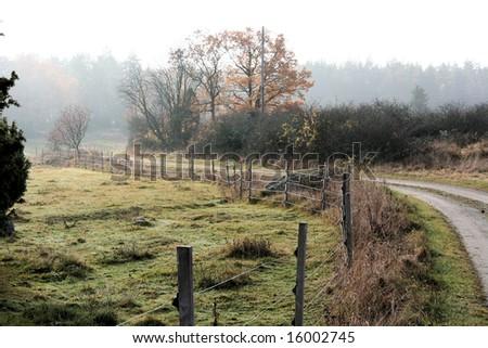 small road - stock photo